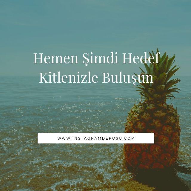 instagram Türk takipçi Arttırma